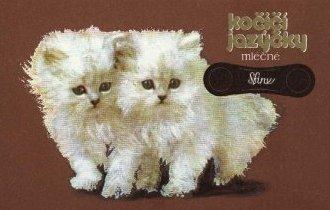 krabička kočičí jazýčky