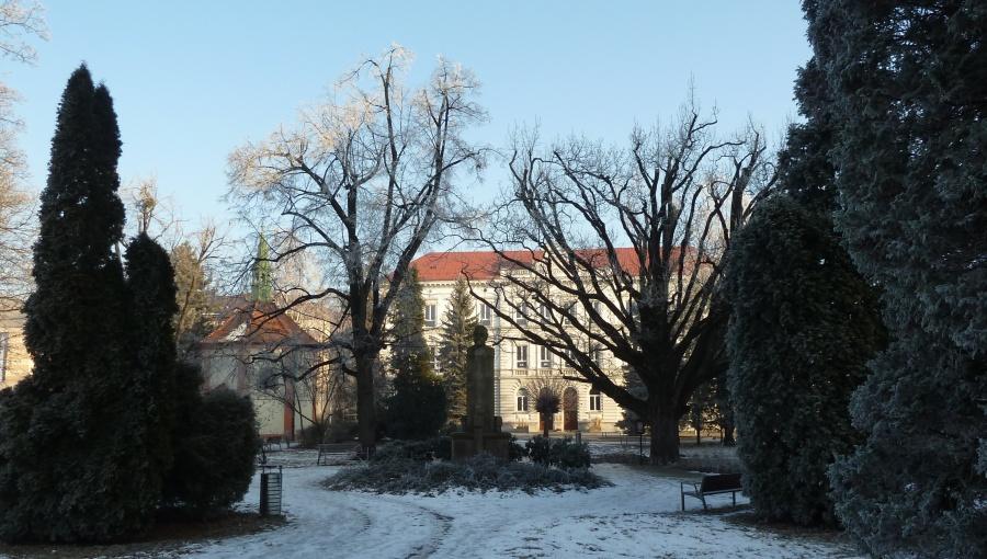 22. ledna 2017 – mráz ve Smetanových sadech (-4,4 °C)