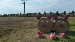 Srpen 2018 – pozvánky na poli k Dožínkám mikroregionu Holešov