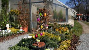 23. března 2019 – Otvírání jara - Stella zahradnictví (9 °C)