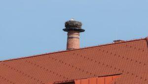 27. března 2020 – pivovarský komín a návštěva čápů (16.5 °C)