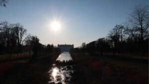 9. únor 2020 – zámecká zahrada (-0,1 °C)